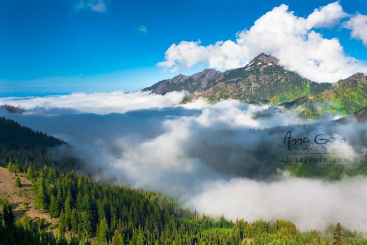 Olympic National Park | washington travel photography pacific northwest olympic national park nature national parks mountains landscapes clouds  | Anna Gorin Design & Photography, Boise, Idaho