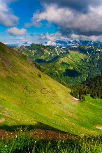 Olympic National Park | washington travel photography pacific northwest olympic national park nature national parks mountains landscapes clouds  | Anna Gorin Design & Photography, Boise, Idaho