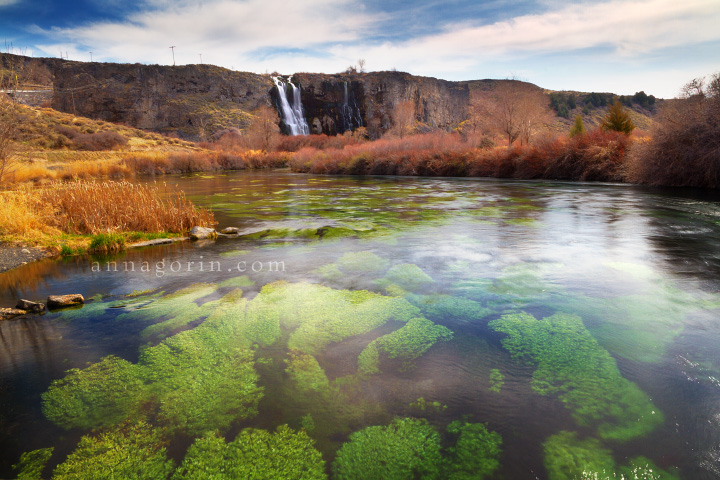Thousand Springs State Park, Idaho | waterfalls travel thousand springs state park thousand springs state parks snake river canyon snake river ritter island photography niagara springs landscapes idaho HDR hagerman box canyon springs  | Anna Gorin Design & Photography, Boise, Idaho